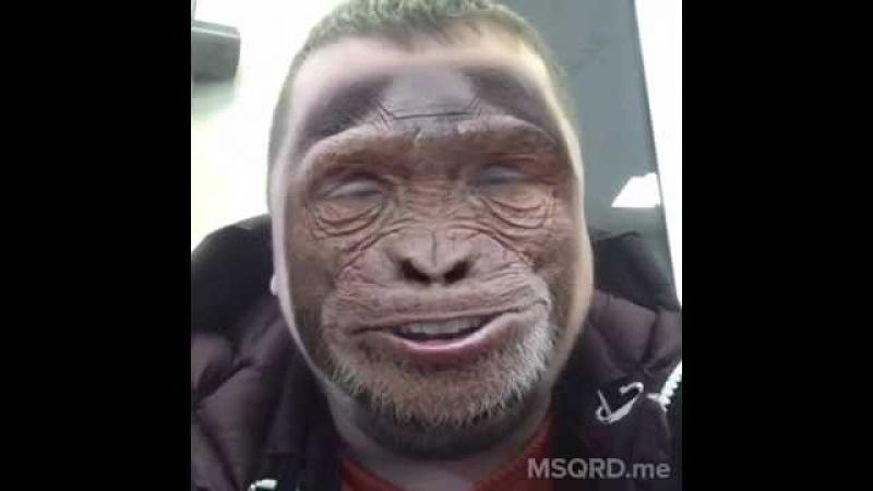 Я Китайский обезьяна, раз, два,три