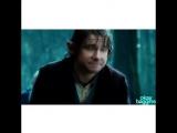 VINE WITH FILMS / SERIALS / The Hobbit /