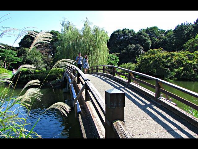 Shinjuku Gyoen - Japanese Park, Tokyo ᴴᴰ ● 新宿御苑 (Early Autumn 2015)