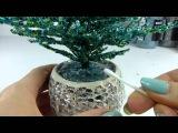 Голубая ель. Урок 5 - Посадка и декорирование  Blue spruce. Lesson 5 - Planting and decoration