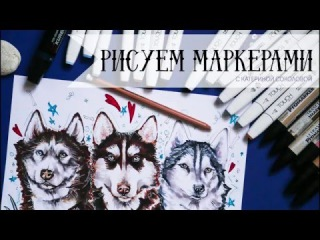 Как нарисовать собаку хаски маркерами (эскиз тату) / How to draw a dog with markers