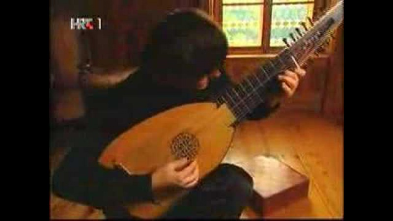 Edin Karamazov (Lute) - J.S.Bach Toccata Fugue part 1