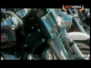 Gangland - Армия Бандидос / Bandidos MC