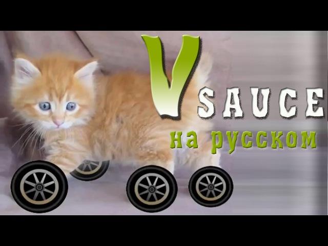 Vsauce Russian Почему у животных нет колес RUS