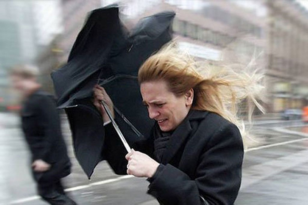 В Ростовской области из-за сильного ветра и понижения температуры велика вероятность возникновения ЧС