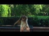 Sia- Elastic Heart I Contemporary Dance Auti Kamal x Lindsey Sandri
