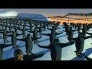Schiffie Co - Penguin Dance