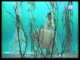 Yellow Magic Orchestra - Kimi Ni Mune Kyun
