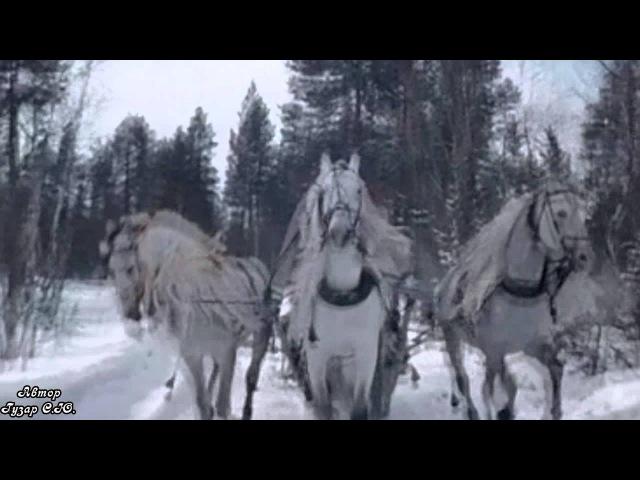 Иван Кучин Барыня