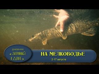 Рыбалка в Астрахани на поверхностные приманки. База ФораФиш