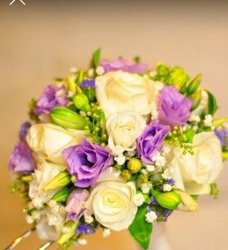 Зеленый слон доставка цветов иваново купить луковицы тюльпаны в интернет магазине недорого с доставкой