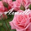 ARMELLE - ароматный бизнес. Казань