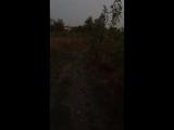 Белые волки(БВ)спорт-интервальный бег на сушке.
