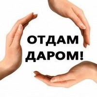 halyava_kherson