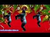 С Новым 2016 годом. Танец обезьян