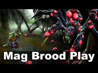Mag Brood Roshan Play - Vega VG