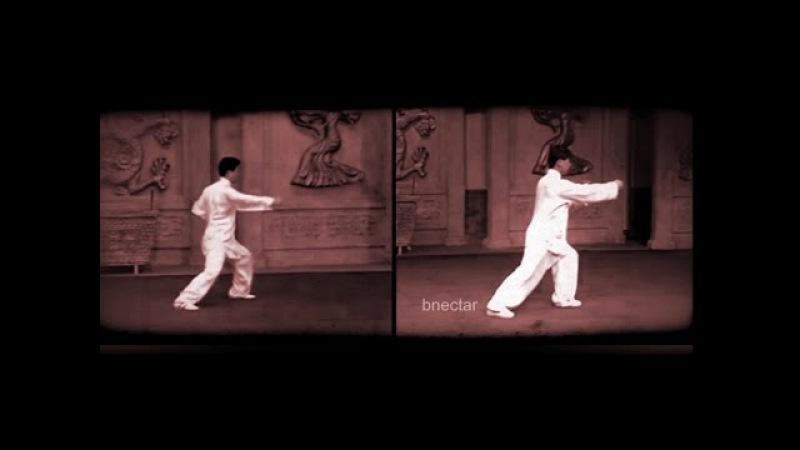 Chen Style Taiji Yang Style Taiji Tai Chi Side by Side
