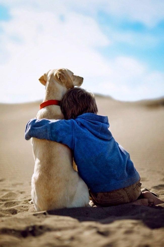 lBIjPE bBu8 - 25 причин, почему детям нужны домашние животные