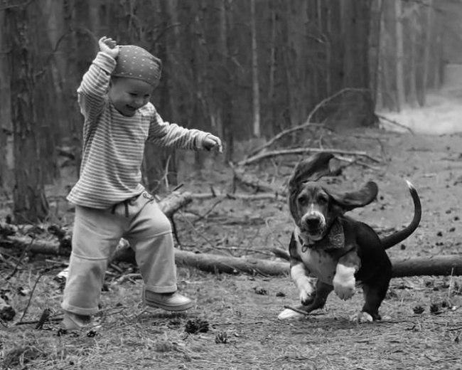ncyFbx44zJw - 25 причин, почему детям нужны домашние животные