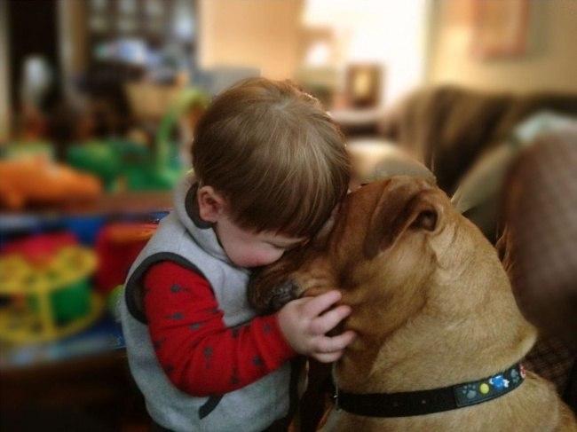 tlAyWC3s ks - 25 причин, почему детям нужны домашние животные