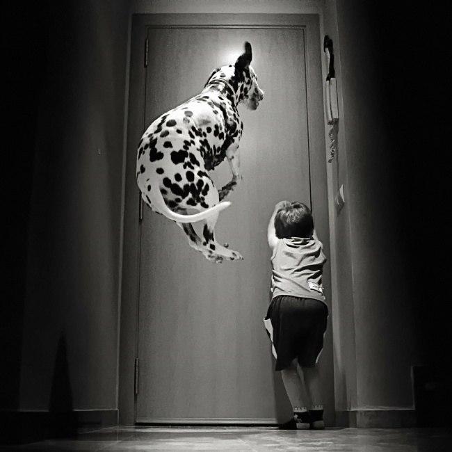 2fggycvAMZ0 - 25 причин, почему детям нужны домашние животные