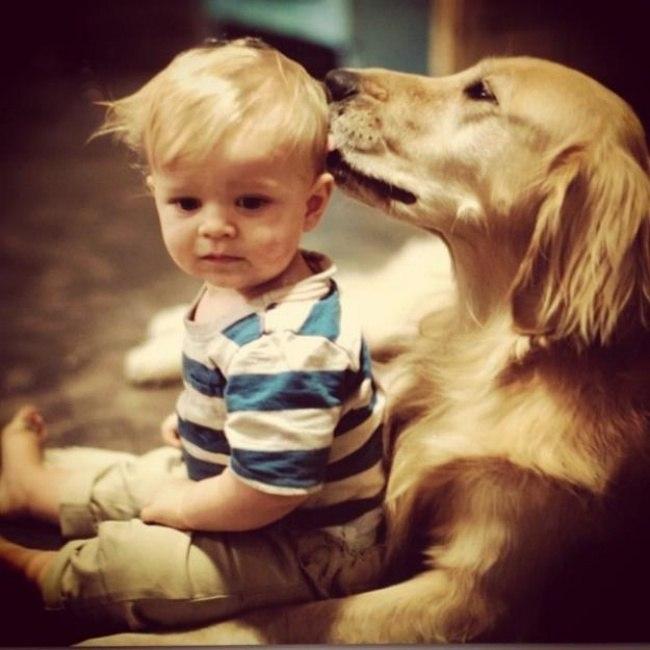 tU8Rjm6qp A - 25 причин, почему детям нужны домашние животные