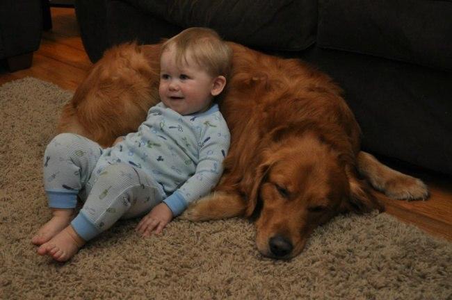 95CmgWGiEW4 - 25 причин, почему детям нужны домашние животные