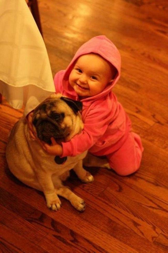 NBovi 9W5wM - 25 причин, почему детям нужны домашние животные