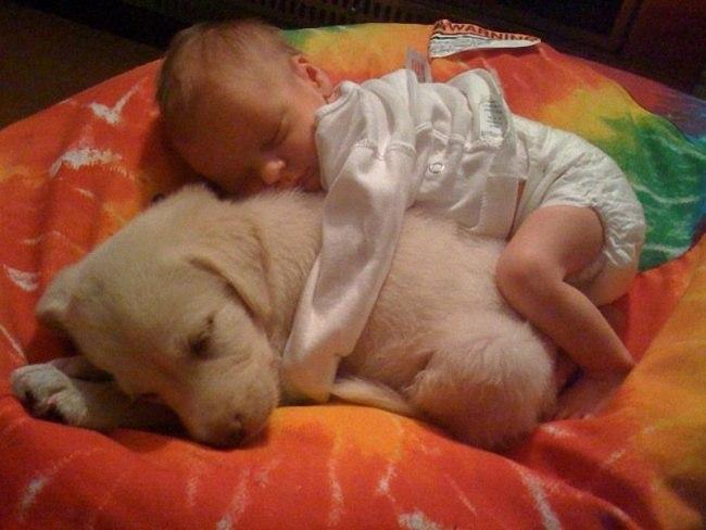 s m3ts7GZAc - 25 причин, почему детям нужны домашние животные