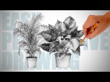How to draw plants - Easy Perspective Drawing 19