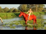 Купание красного коняPhotography workshop