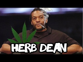 Herb Dean's Finest Moments (Worst Mistakes)