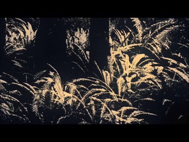 Seba - Jungle Music