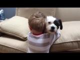 Хоть собака и непослушный, но я все равно его люблю