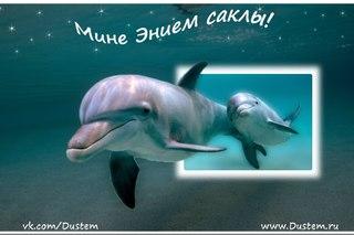 Татарские открытки 8 марта