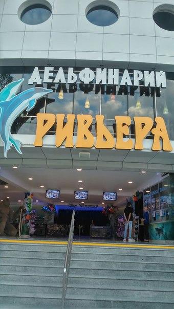 """Вместе с дельфинами"". - Страница 24 R-sPa0zsbaE"