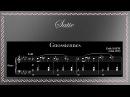 Erik Satie - 6 Gnossiennes, for Piano (Full)