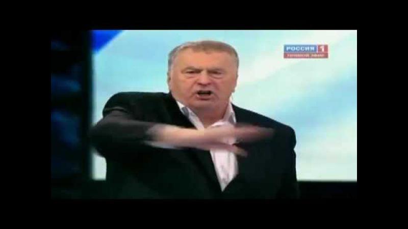 Жириновский - современный Гитлер. Отжигает )
