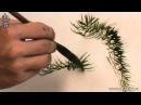Обучение рисованию деревьев при помощи живописи у-син Часть 6 как рисовать лист