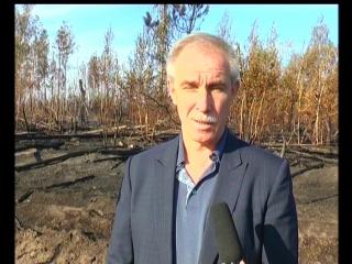 Губернатор С.И. Морозов на месте лесного пожара в Новоспасском
