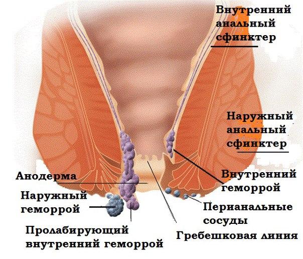 lesbiyanok-v-kontakte