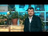 Видеоприглашение Тимура Исякаева на мастер-класс в Краснодаре 25.11.2015