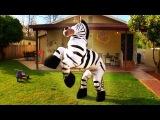 Dope Zebra - Rhett &amp Link (Official Original Video)