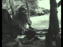 1970 - В лазоревой степи (реж О Бондарев, В Лонской, В Шамшурин - киноальманах)