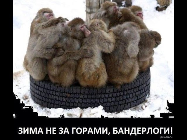 Смешная украина