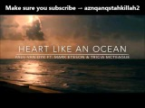 Paul Van Dyk feat. Mark Eteson &amp Tricia McTeague - Heart Like An Ocean