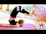 Развитие гибкой и сильной спины / ПРОГИБЫ / Занятие ИНТЕНСИВ