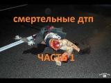 Ужасные аварии и смертельные дтп смотреть ужасные аварии и смертельные дтп часть 1