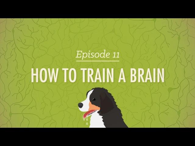 How to Train a Brain - Crash Course Psychology 11