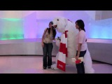 WORLD OF COCA-COLA POLAR BEAR MEET &amp GREET